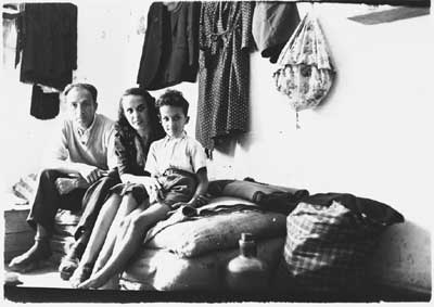 holocaust effects on jews during ww11 Jews realized that total assimilation into american culture and the relinquishment of their jewish identity, religion, culture, and language was not a constructive way to satisfy their need to find meaning in the holocaust and to experience rebirth of their lost communities and loved ones.