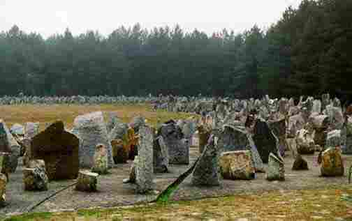 the extermination camp treblinka an overview essay Check this extermination camp treblinka essay sample or purchase custom written one.