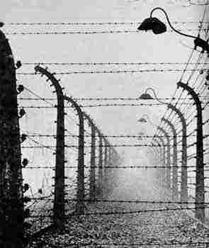 Barbed wire - Wikipedia, the free encyclopedia