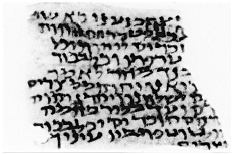 Figure 1. Fragment of Exodus 13 in Palestine cursive script, second century C.E. Jerusalem, Hebrew University Dept. of Archaeology.