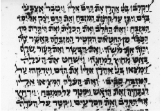 Figure 17. Passage from Leviticus in Parsic square script 1571 C.E. New York, Jewish Theological Seminary of America, Ms. Adler 313.