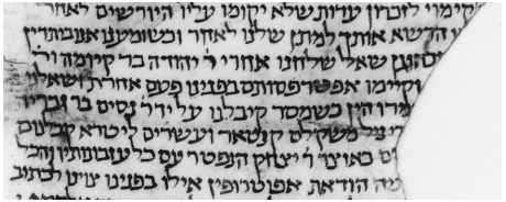 Figure 21. Fragment of legal deposition in Maaravic square script, 978 C.E. Cambridge University Library, T-S. 12,468.