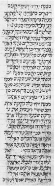 Figure 28. The oldest European Ms. in Italkian square script. Bible dated 979 C.E. Rome, Vat. Lib., Ms. Urb. Ebr. 2, fol. 41a.