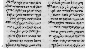 Figure 8. Excerpt from Shain Shirazis Judeo-Persian paraphrase of the Pentateuch in Parsic mashait script, 1702. London, British Museum, Ms. Or. 4742, fol. 342b.