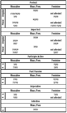 The Paradigm of the Strong Verb (Qal):